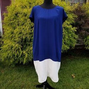 Madewell Colorblock Tunic Dress Sz